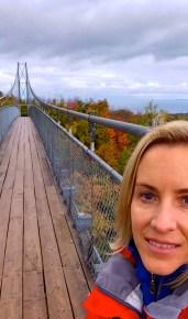 suspension-bridge-collingwood