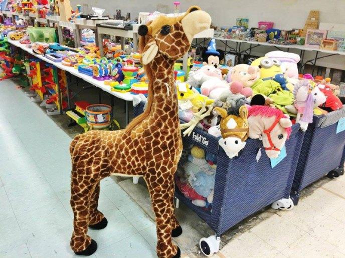 giraffe-tall