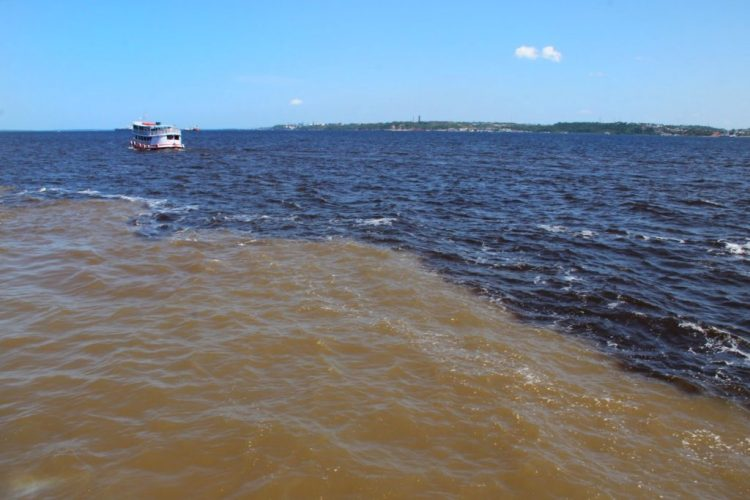 Amazon river - meeting of the waters