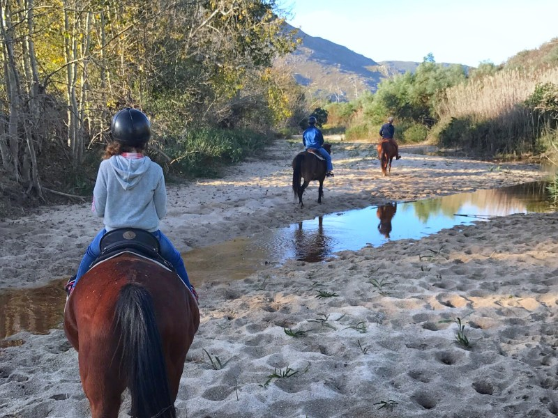 Horseback ride in Hermanus - South Africa