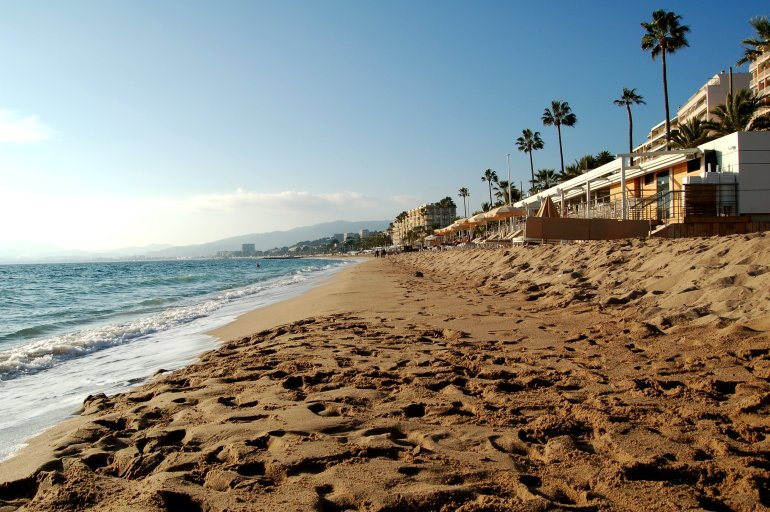 A sandy beach and palm trees in Cannes, France