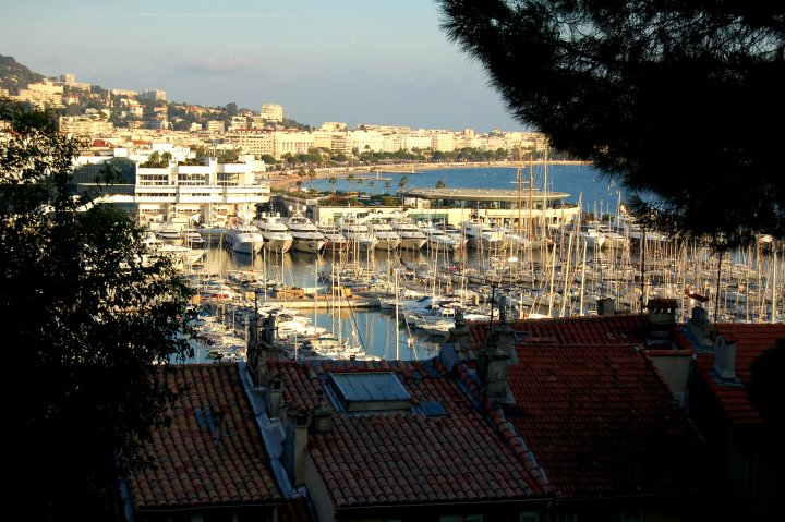15 Beautiful Photos of Cannes, France - Cannes Harbour