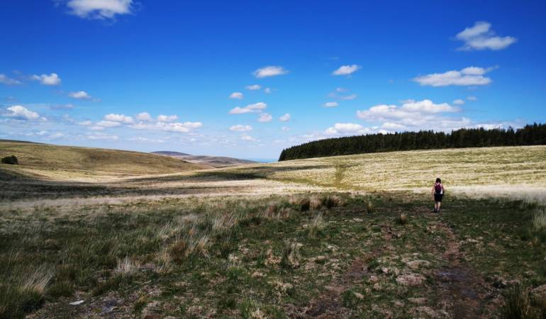 Dartmoor Hiking Trails - Postbridge to Fernworthy Reservoir
