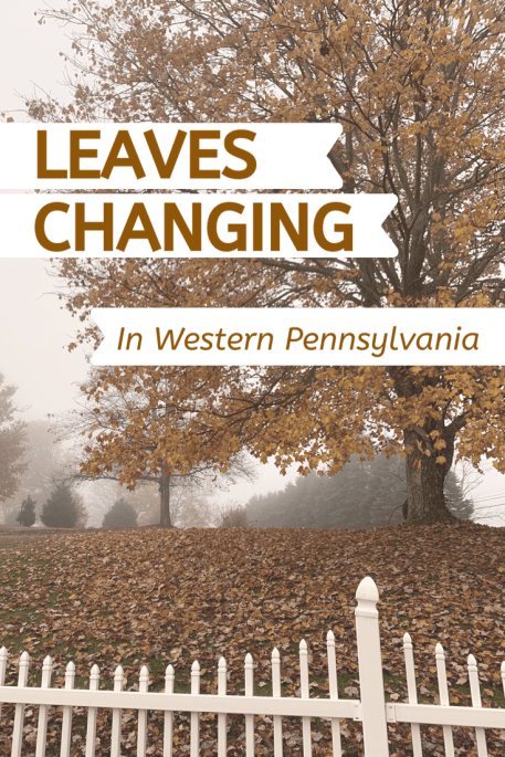leaves changing in western pennsylvania | Western Pennsylvania in the fall