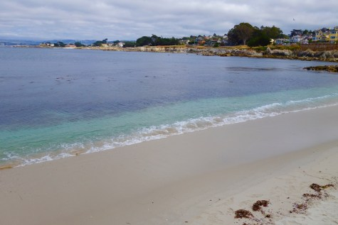 With arts, beaches, nature, and great food, Monterey, California may be the perfect city. Click to read why Monterey should be your new favorite travel destination! Grab Your Moment and GO!| http://passportandplates.com