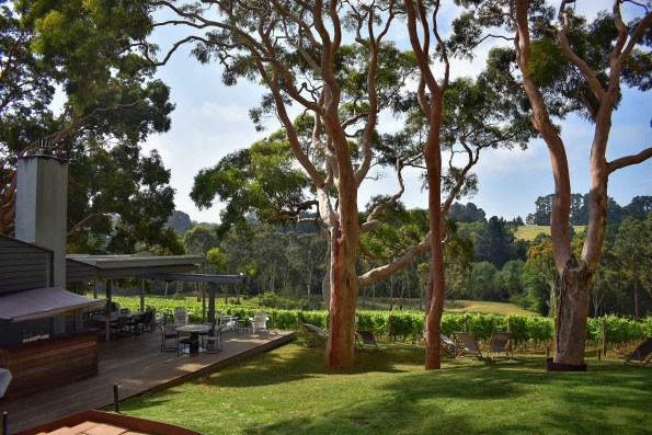 Polperro winery, Red Hill