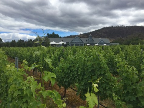 Frogmore Creek winery, Hobart