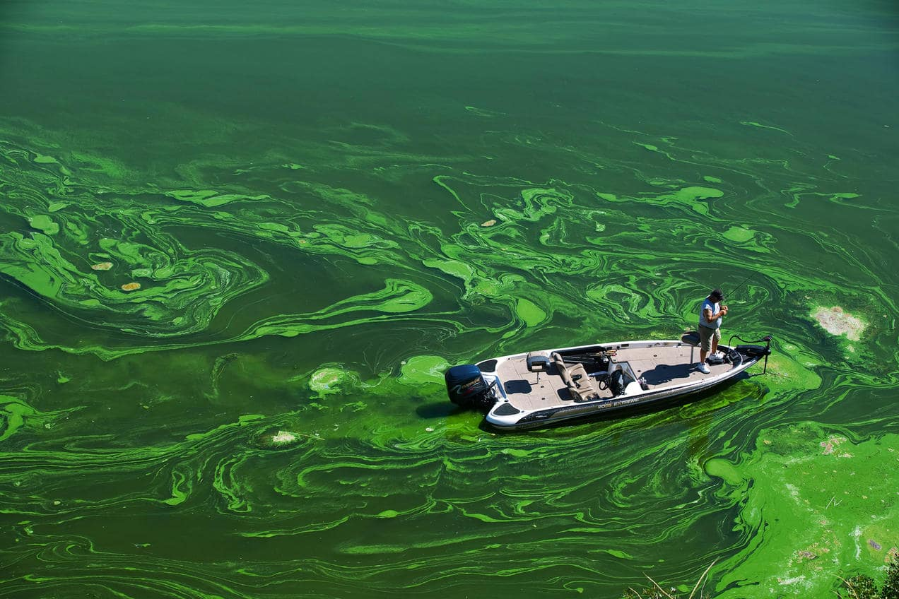 30 Shocking Facts About Water Pollution