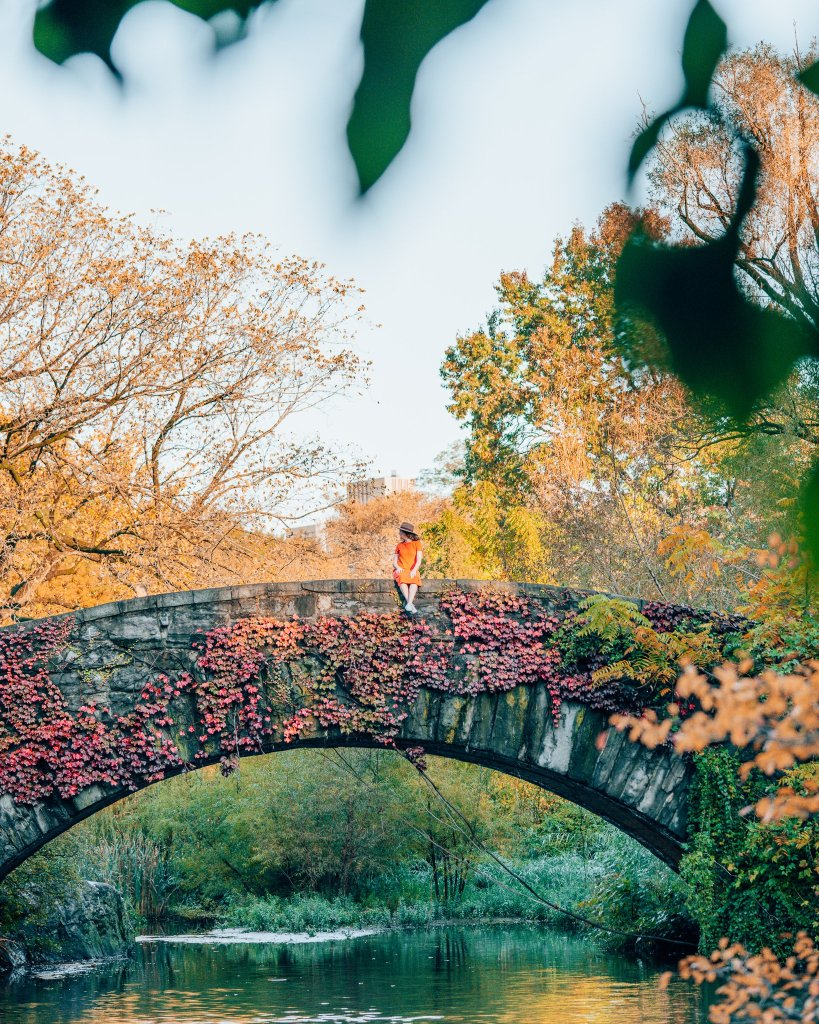 Bow Bridge, Central Park photo