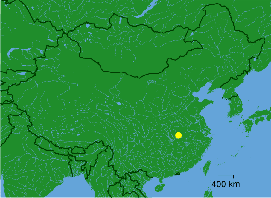 Wuhan_dot