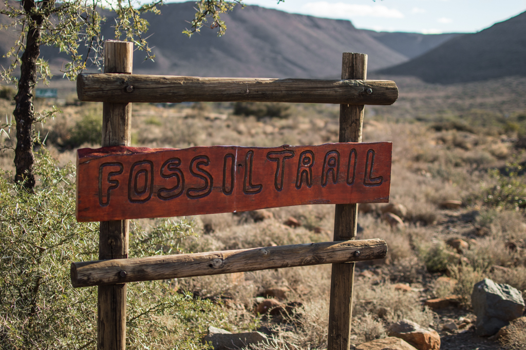 The Fossil Trail at Karoo National Park