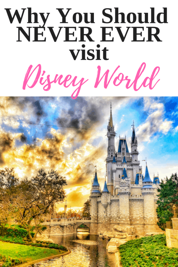 Why You Should NEVER EVER Visit Disney World