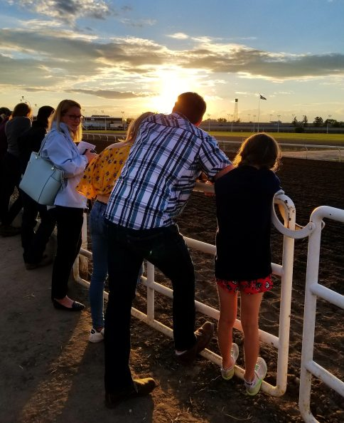 Thoroughbred Racing, Edmonton, Alberta