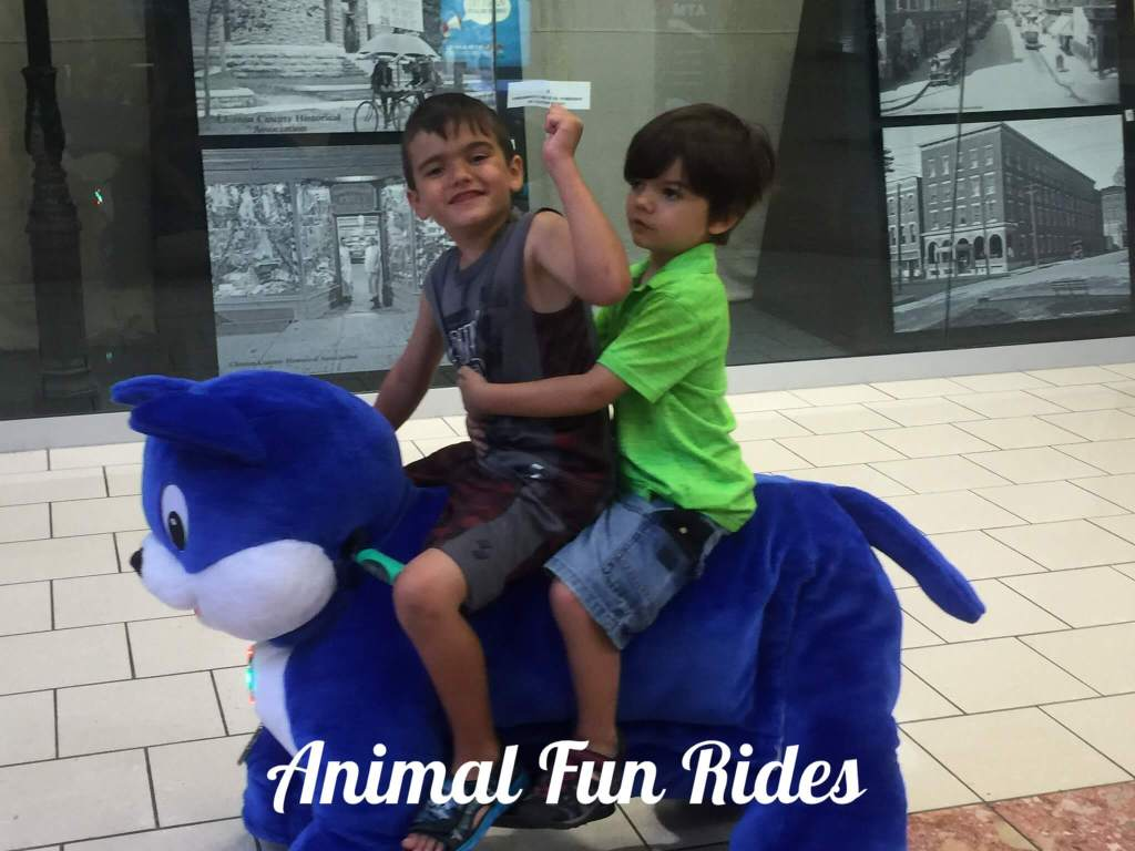 Animal fun rides plattsburgh kids Champlain Centre mall