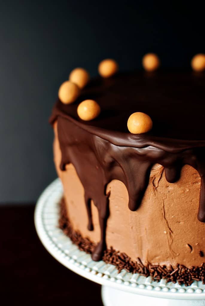Chocolate Peanut Butter Cake {Pass the Sushi}