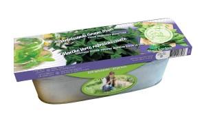 Decoratieve zaai set Groene Munt BIO in zinken bak