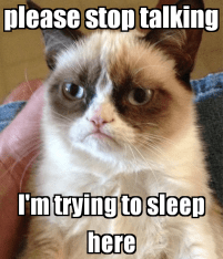 please-stop-talking-i-m-trying-to-sleep-here