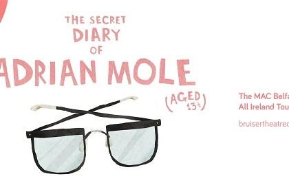 Adrian Mole Belfast