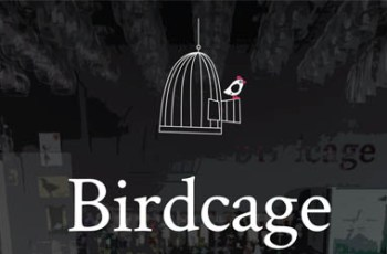 Birdcage Belfast