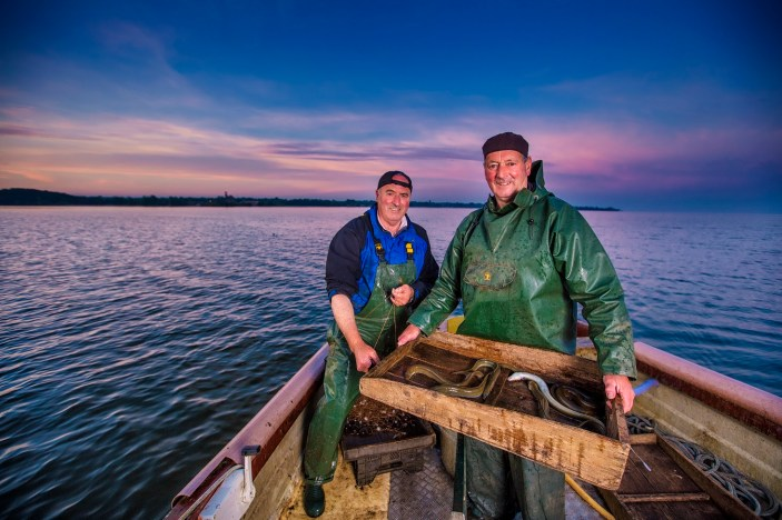 Lough Neagh Eels Iconic Local Brands