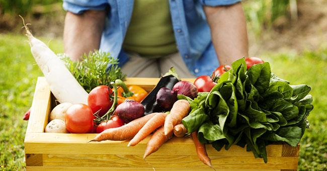 ripieni dei ravioli con verdure