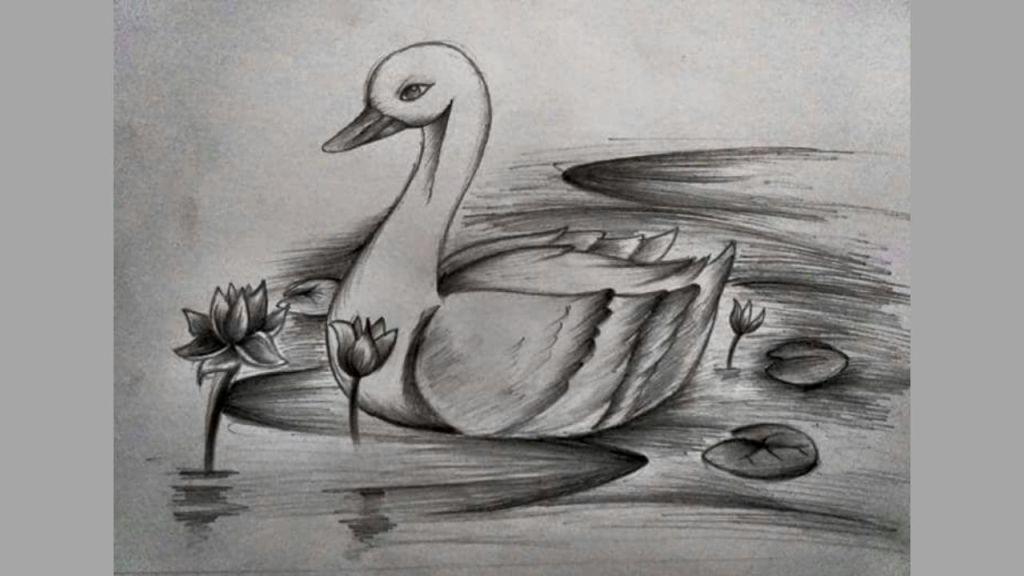 contoh gambar arsir hewan