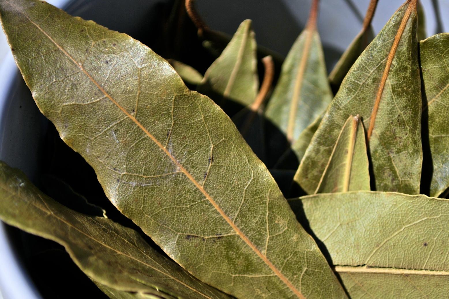 Dried Bay Leaves/Folhas de Louro