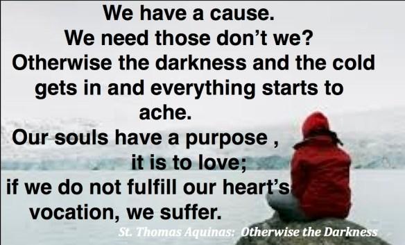 Aquinas purpose