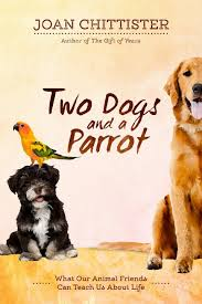 Two dogs & parrot