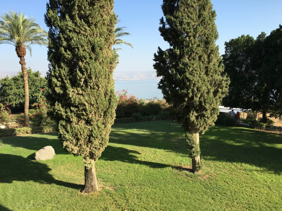 The grounds around the Church of the Beatitudes with the Sea of Galilee in the background