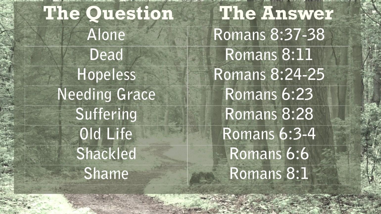 Spiritual Life 7 post adds.001
