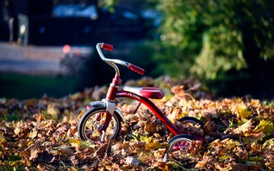 Training Wheels for the Great Commission