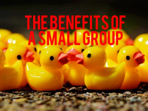 benefits of a small group