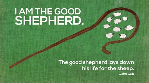 Sunday Sermon:  Matthew 9:27-38 – Like Sheep without a Shepherd