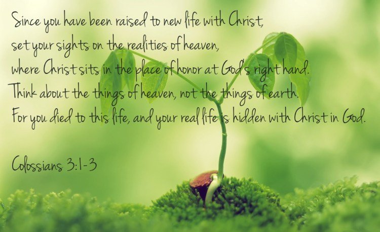 11-Life-Changing-Born-Again-Verses-Pastor-Unlikely