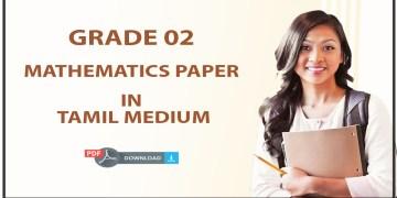 Download 2017 Grade 02 Mathematics in Tamil medium
