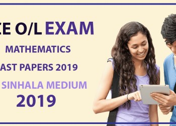 2019 O/L Mathematics with Answers
