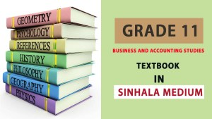 Grade 11 business and accounting studies textbook - New Syllabus