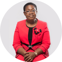 Prof. Imelda Udoh, Author of Fruiting In The Desert Of Widowhood