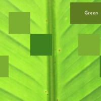Green: WPC