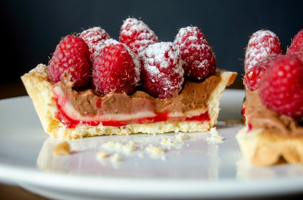 chocolate raspberry tartlets
