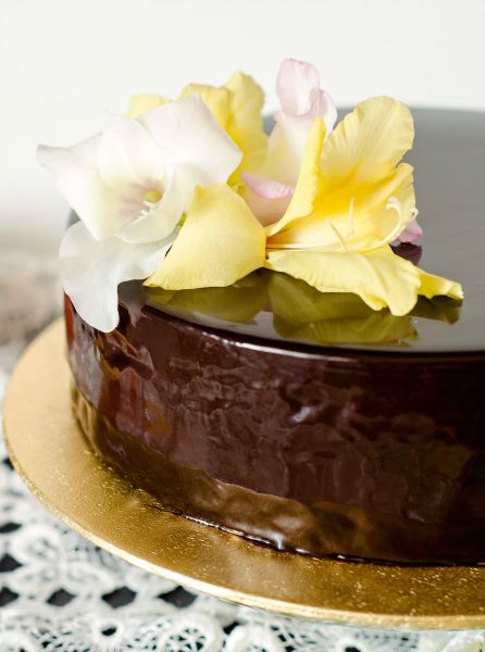 chocolate peach entremet
