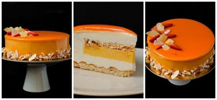 coconut passion fruit entremet4