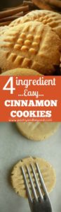 4 ingredient easy cinnamon cookies