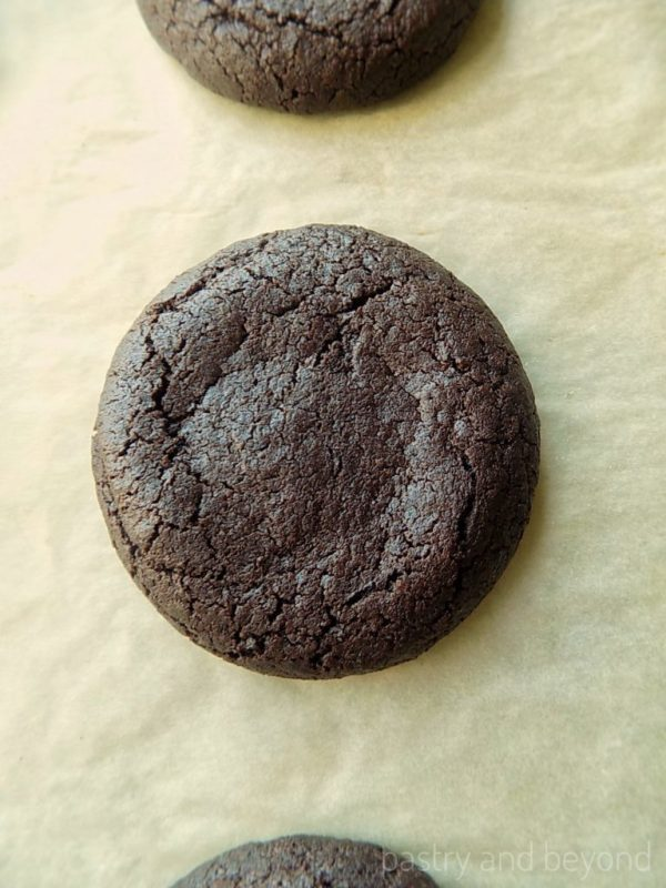 Chocolate Cookies with Cocoa Powder-These delicious chocolate cookies with cocoa powder are perfect to stop your chocolate craving! They are soft and moist in the middle, crispy at the edges. #cocoacookies #chocolatecookies #easy #plain #soft #cocoa #recipes Recipe on pastryandbeyond.com with step by step pictures.