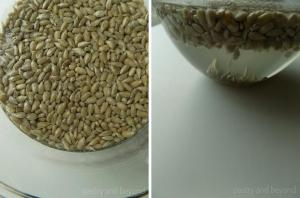 Removing salt from sunflower seeds by placing them into a bowl that is full of water.