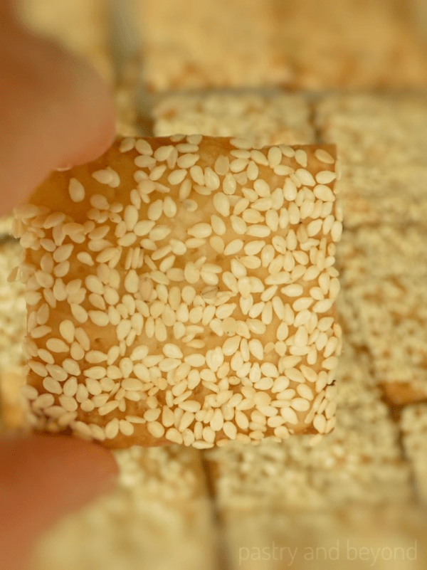Holding the Sesame Cracker