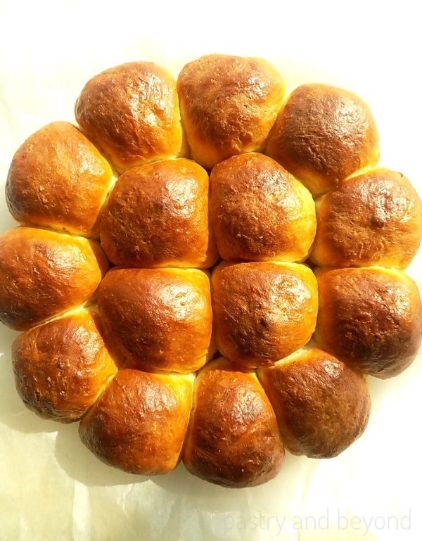 Baked no-knead soft dinner rolls as a whole circle.