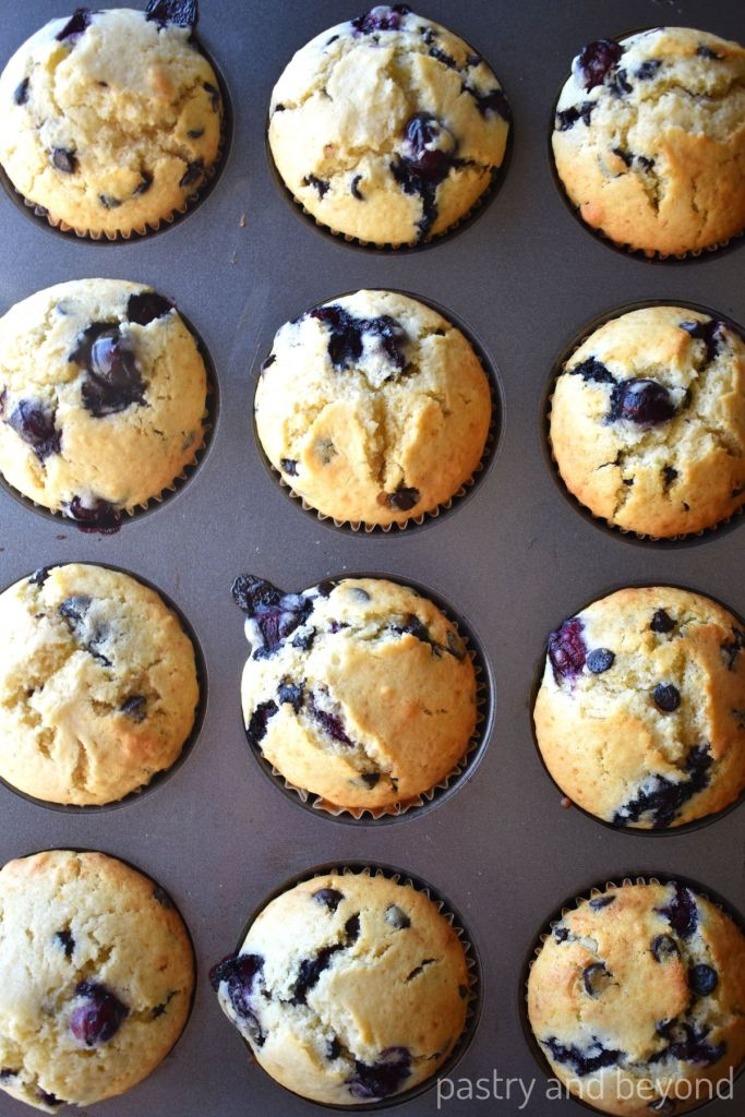 Overhead view of blueberry muffins that are in a muffin pan.