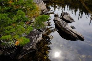 east shore while hiking Camas Creek Trail to Camas Lake Montana
